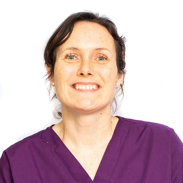 lisa sheldon dentist in mansfield